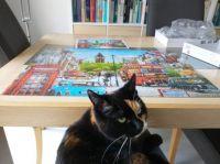 Noor is helping me puzzle