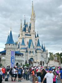 Castle at Walt Disney World-Orlando-Florida-2346x3128