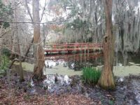 Red Bridge at Magnolia Plantation