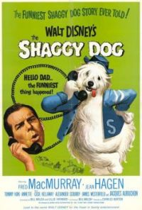 Walt Disney's THE SHAGGY DOG - 1959  FRED MacMURRAY, TOMMY KIRK, TIM CONSIDINE, JEAN HAGEN