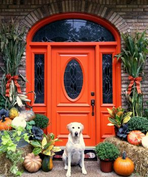 The Orange Door and Its Protector