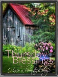 Good Morning - Thursday Blessings!