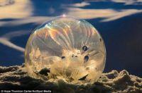 Frosty Snow Globe 9
