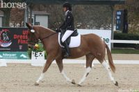 Heart B Dyna and Laura Hermanson make history at the US National Dressage Finals