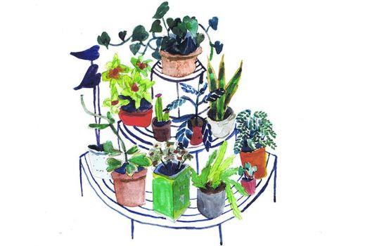 Circular Plant Stand