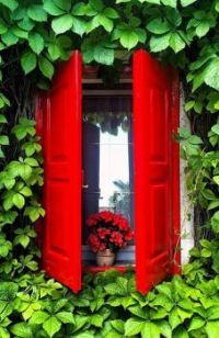 Window With Red Shutters