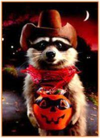Howdy Pardner!  Tonight I Want Treats, Not Trash!  We Like Halloween Too!