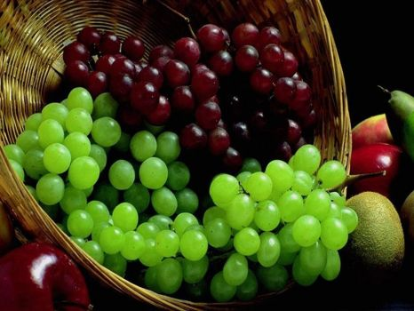 Grapes - Rio Grande do Sul Brazil