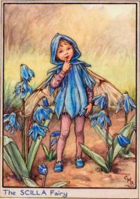 The Scilla Fairy (mini)