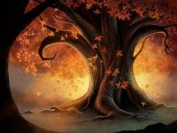 theme: fall tree