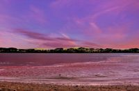 The Pink Lake at Port Gregory