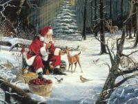 Christmas - Sanda & Woodland Friends