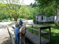 Horse back riding in the Smokies