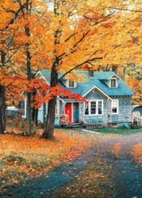 Cottage in the Autumn Woods.....