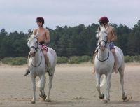 Household Cavalry Paddling at Holkham Beach 2013