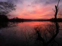 Solnedgang over Farum sø