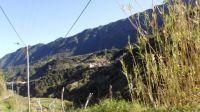 030 Madeira