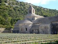 FRANCE – Vaucluse - Sénanque Abbey