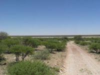 Mabusehube Pans Kgalagadi Game Reserve Botswana