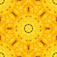 kaleidoscope 76 the yellow challenge and some ants :) small
