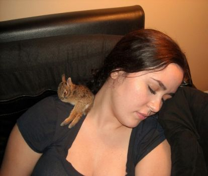 I always sleep better with a bun on my shoulder