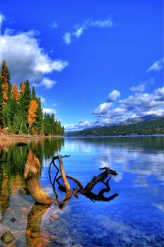 Huckleberry Bay, Payette Lake, McCall, Idaho by David Ryan