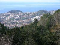 Madeira 2012 januar 067