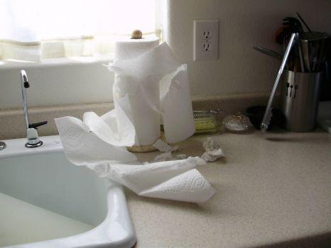 Paper Towels?