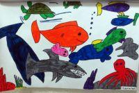 Cameron's fish