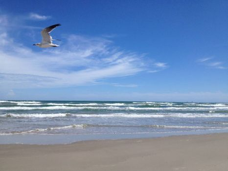 September day at the Beach, North Padre Island, TX