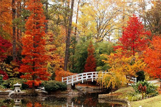 Duke Gardens N.Y. in fall