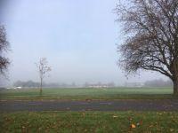Mist over the meadows
