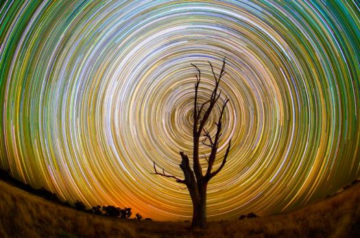Star Trails 5