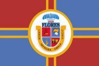 Fun With Uruguayan Flags - Flores - Medium