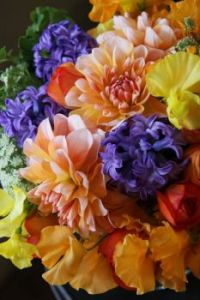 Colourful Dahlias,Ranunculus,Hyacinth and Sweet peas
