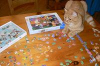 George and his cat jigsaw puzzle