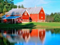 Twin Red New England Barns Reflecting, ...