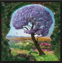 purple tree brain