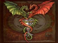 DRAGONS celtic