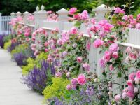 Shabby-Chic-Garden-Decors-Picture-1