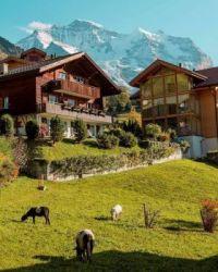Switzerland - der Schweiz 4.5.jpg