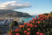 View Over Fish Hoek Nr Cape Town
