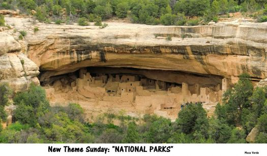 "New Theme Sunday:  ""NATIONAL PARKS""  Mesa Verde NP  I have been there twice, amazing."