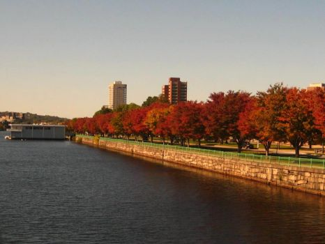 Autumn along the Charles MA