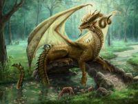 Elissa's dragon