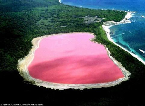 Amazing Pink Lake Hillier in Australia