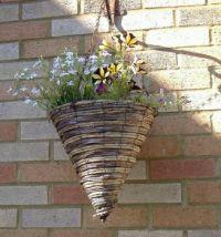 Garden - This Year's Hanging Baskets 1