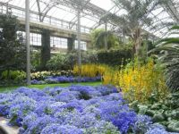 Spring is has arrived inside Longwood Gardens!