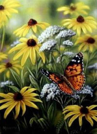 Painted Lady Butterfly by Rosemary Millette