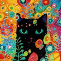 Catnip Dreamer